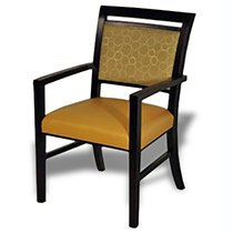 Multipurpose Chair 310-1060